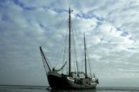 A-Ship's-Opera