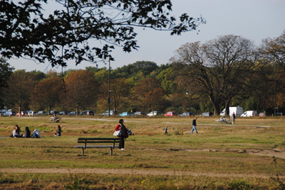 Wimbledon-Common