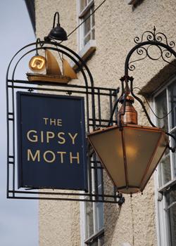 The-Gipsy-Moth
