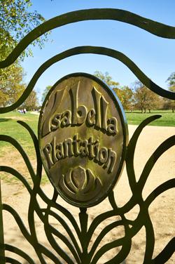 Isabella-Plantation