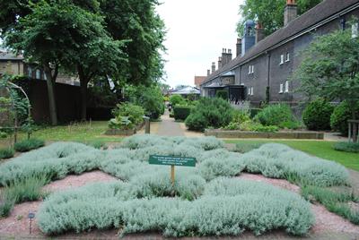 The-Knot-Garden