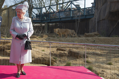 Queen-with-lions